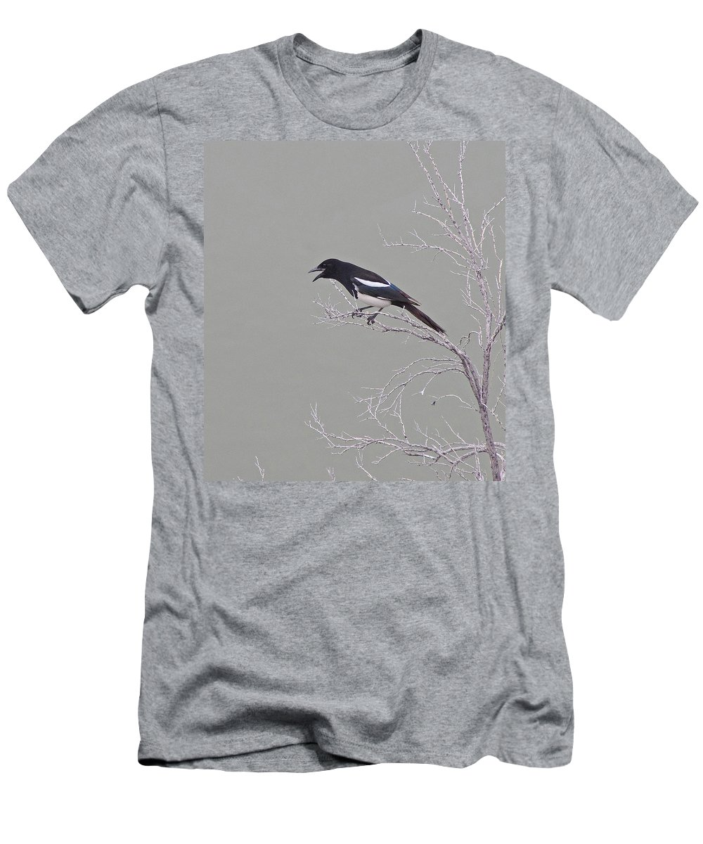 Bird Men's T-Shirt (Athletic Fit) featuring the photograph Noisy Magpie by Mike and Sharon Mathews