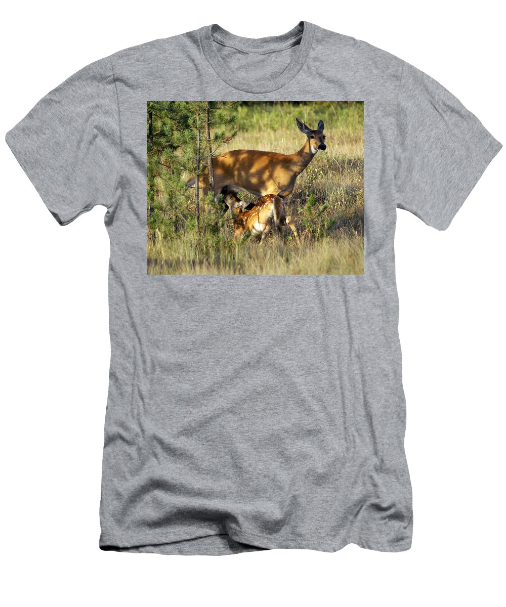 Deer Men's T-Shirt (Athletic Fit) featuring the photograph Nursing Fawn by Marty Koch