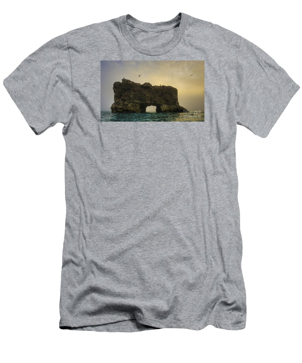 Glaucous Gull Men's T-Shirt (Athletic Fit) featuring the photograph O Mighty Rock... by Nina Stavlund
