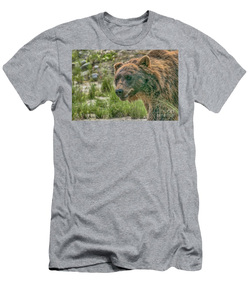 Bear Men's T-Shirt (Athletic Fit) featuring the photograph On The Move by Heather Hubbard