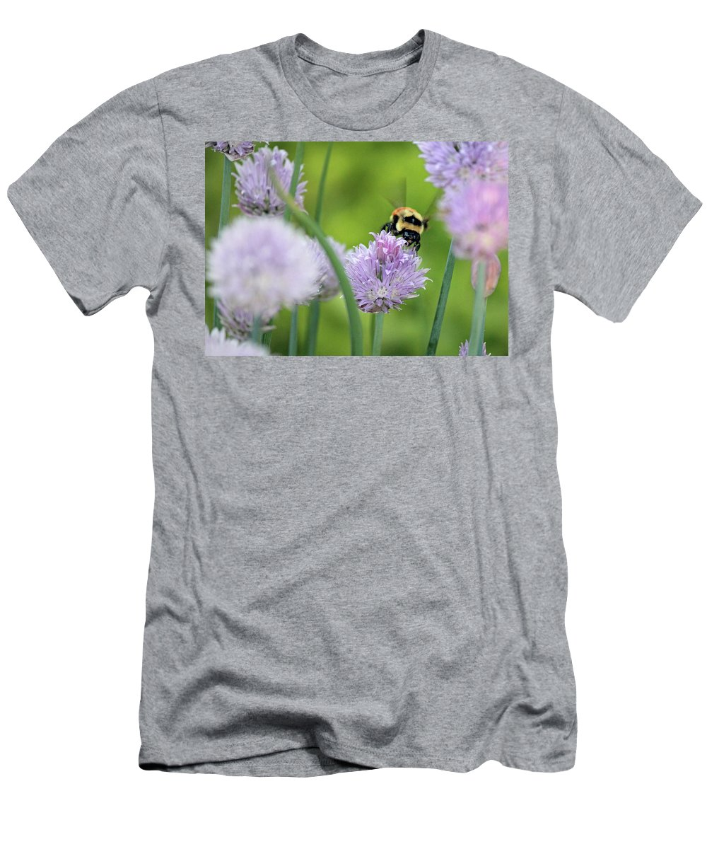 Orange-belted Bumblebee Men's T-Shirt (Athletic Fit) featuring the photograph Orange-belted Bumblebee On Chive Blossoms by Codee Pyke