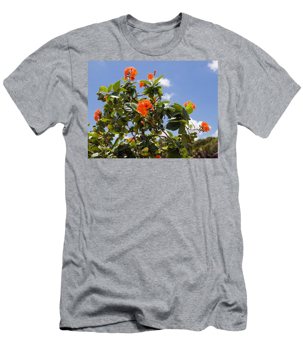Hibiscus; Rosasinensis; Rosa; Sinensis; Rosa-sinensis; Tree; Bush; Shrub; Plant; Flower; Flowers; Fl Men's T-Shirt (Athletic Fit) featuring the photograph Orange Hibiscus With Fruit On The Indian River In Florida by Allan Hughes