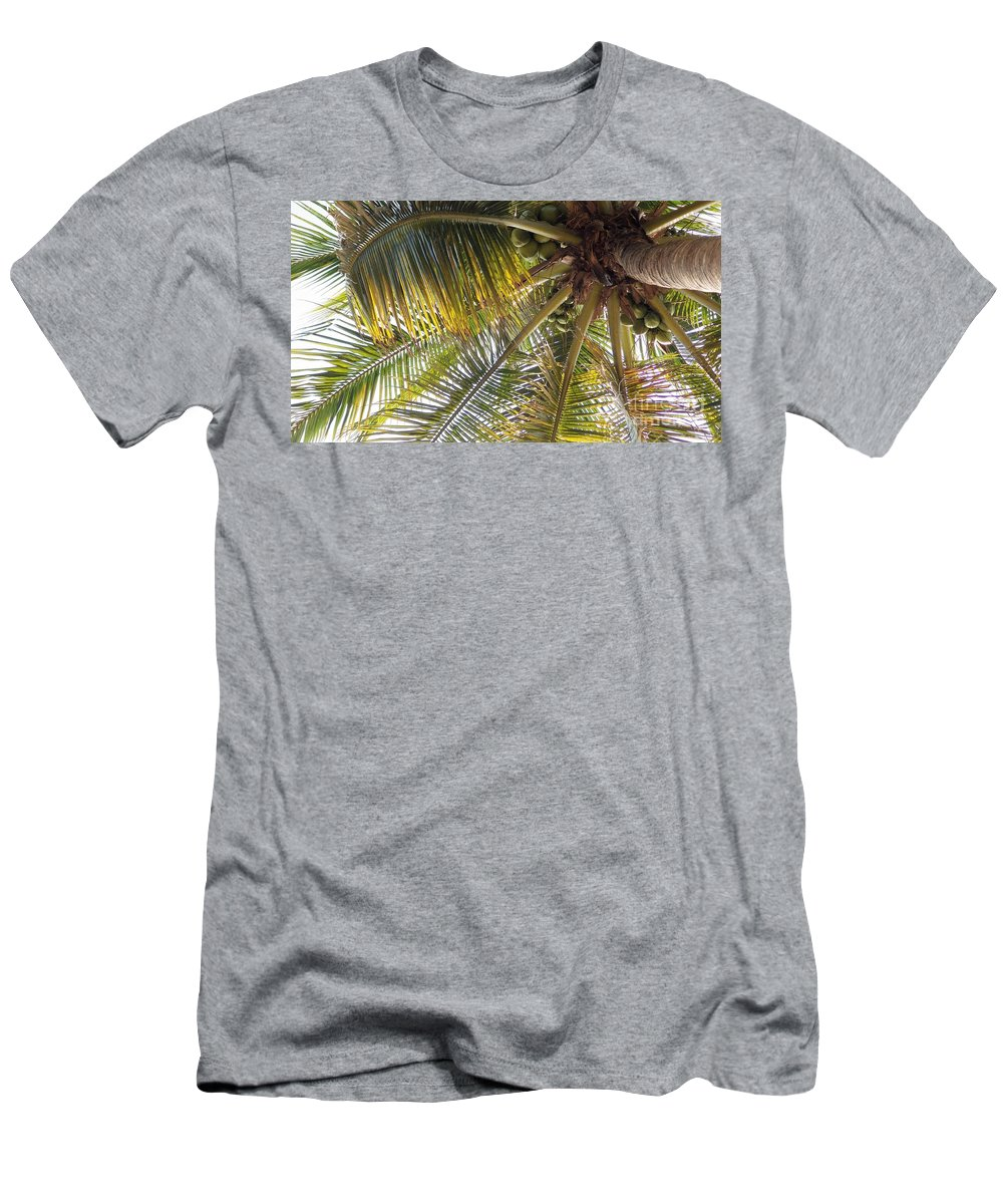 Palm Men's T-Shirt (Athletic Fit) featuring the photograph Palm Collection - Coconuts Are Fine by Victor K