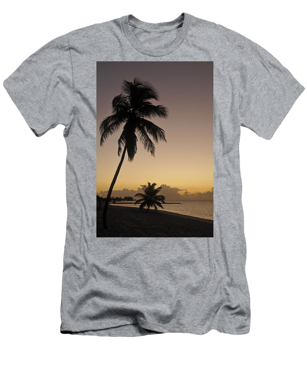 Palm Tree Men's T-Shirt (Athletic Fit) featuring the photograph Palms by John Coffey