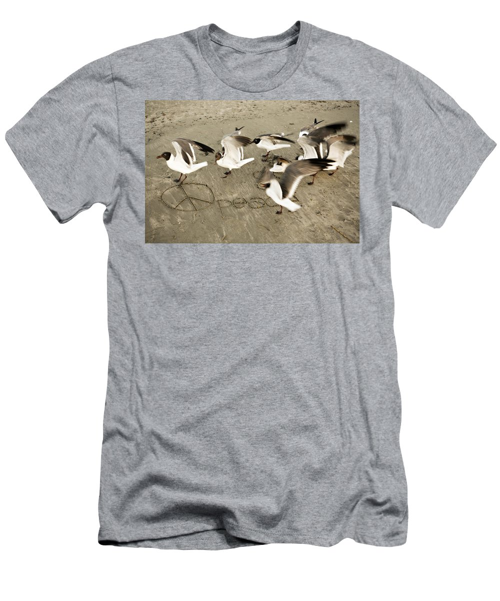 Bird Men's T-Shirt (Athletic Fit) featuring the photograph Peace Dance by Marilyn Hunt