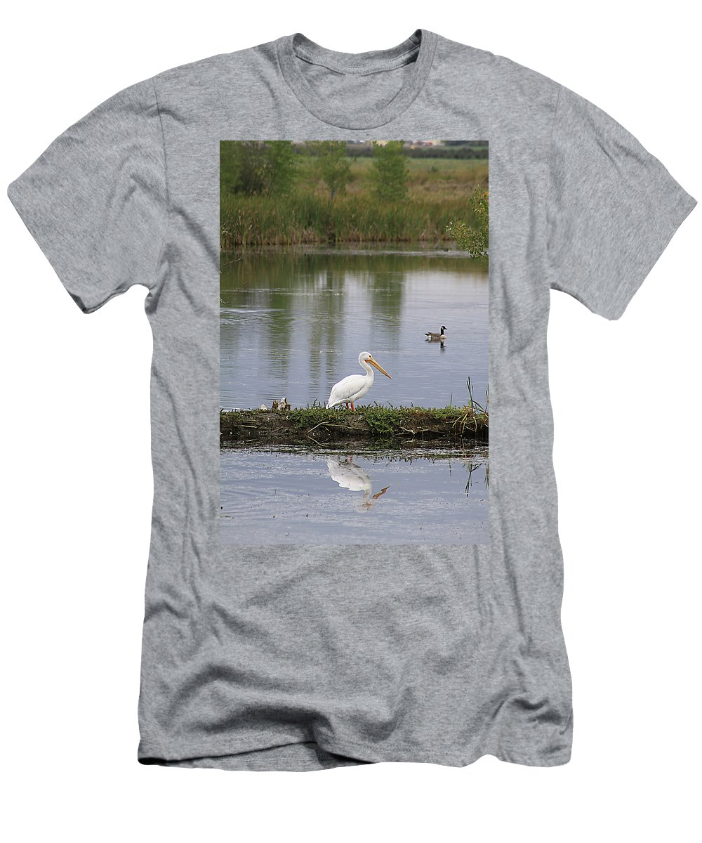 Bird Men's T-Shirt (Athletic Fit) featuring the photograph Pelican Reflection by Alyce Taylor