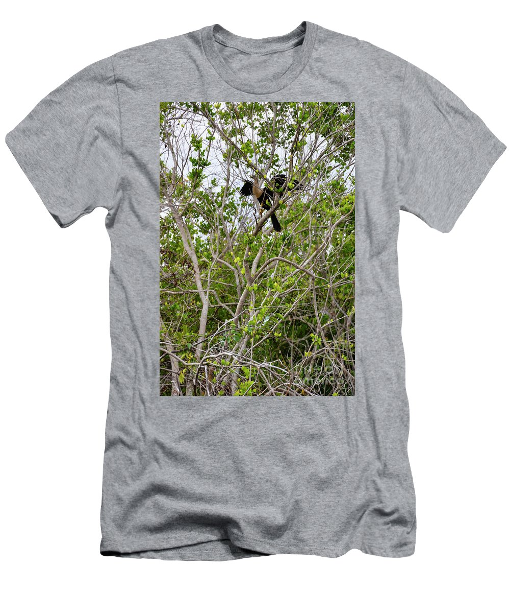 The Everglades Men's T-Shirt (Athletic Fit) featuring the photograph Perched Anhinga by Bob Phillips
