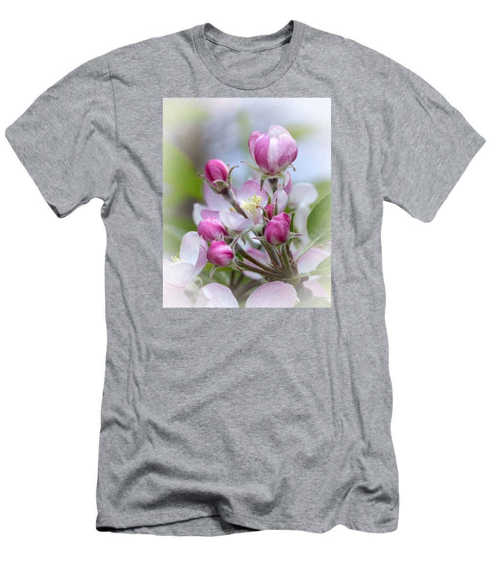 Apple Blossom Men's T-Shirt (Athletic Fit) featuring the photograph Perfectly Pink by Dana Crandell