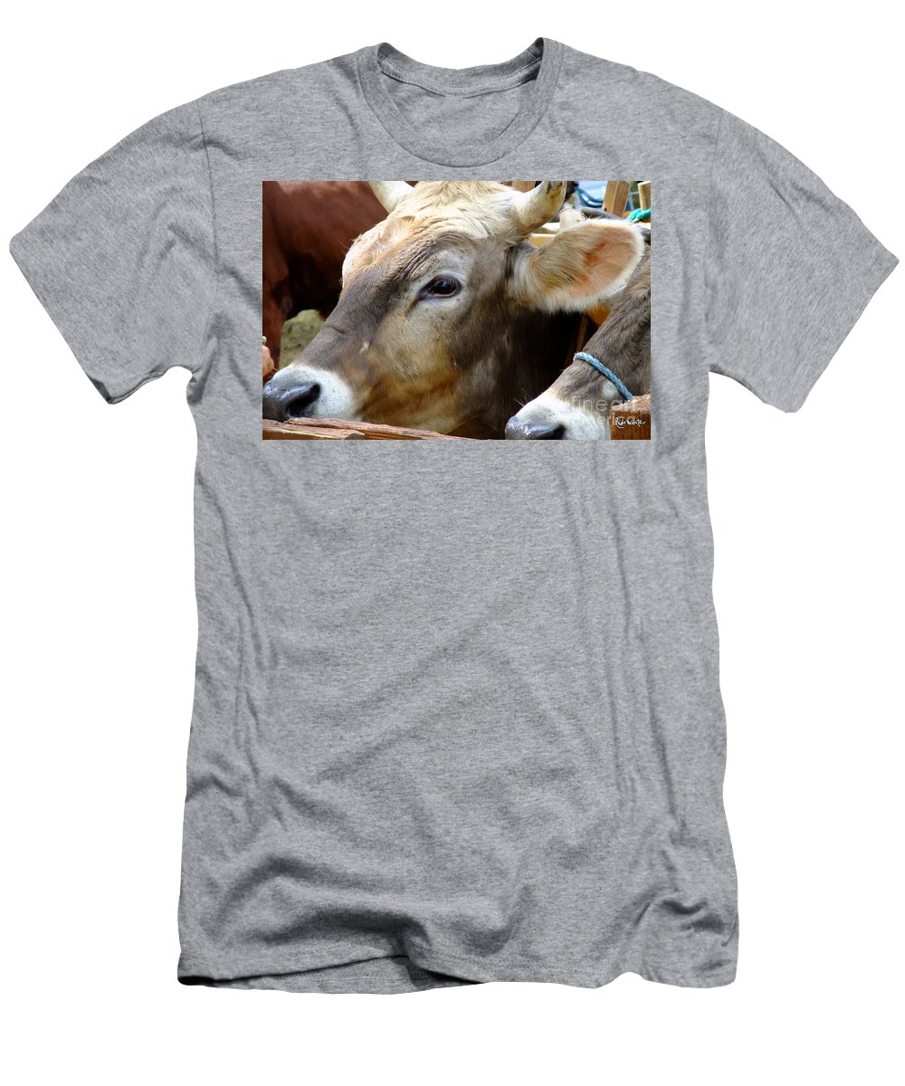 Animals Men's T-Shirt (Athletic Fit) featuring the photograph Performance Anxiety by RC DeWinter