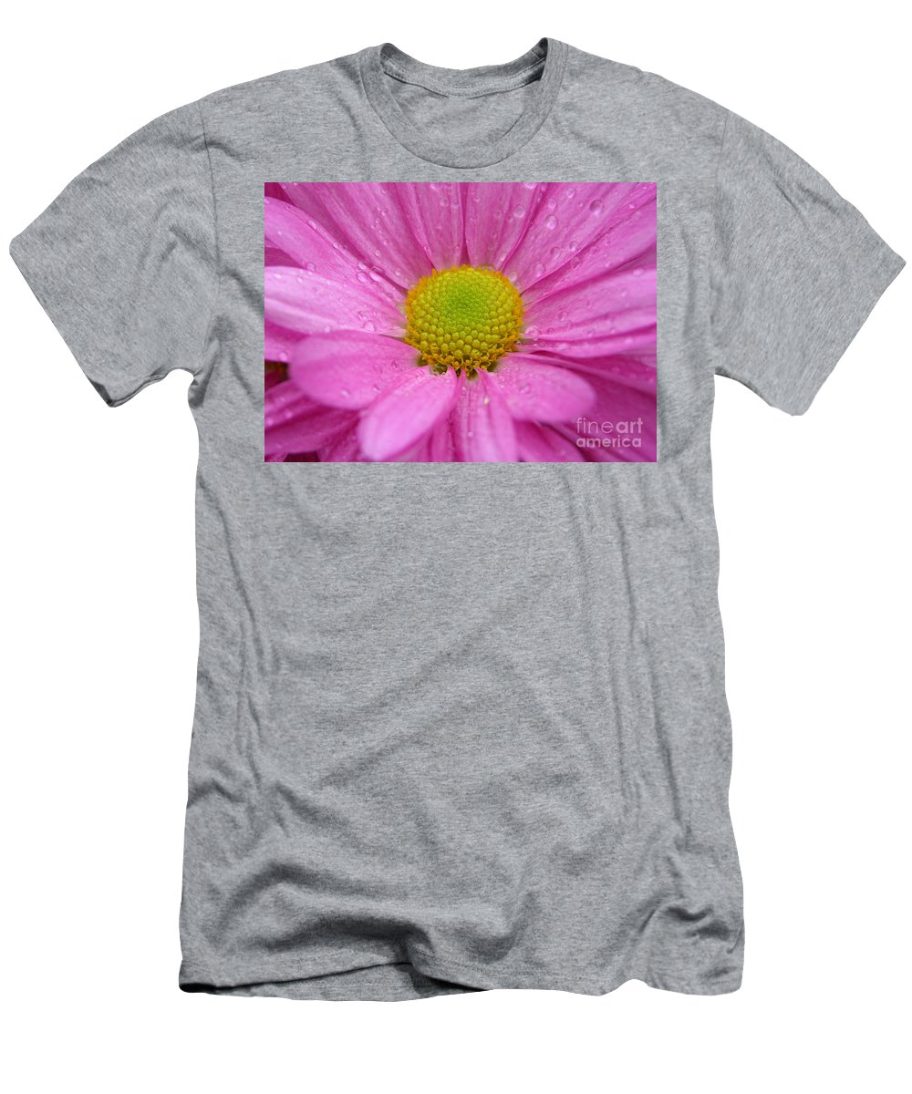 Pink Daisy Men's T-Shirt (Athletic Fit) featuring the photograph Pink Daisy With Raindrops by Carol Groenen