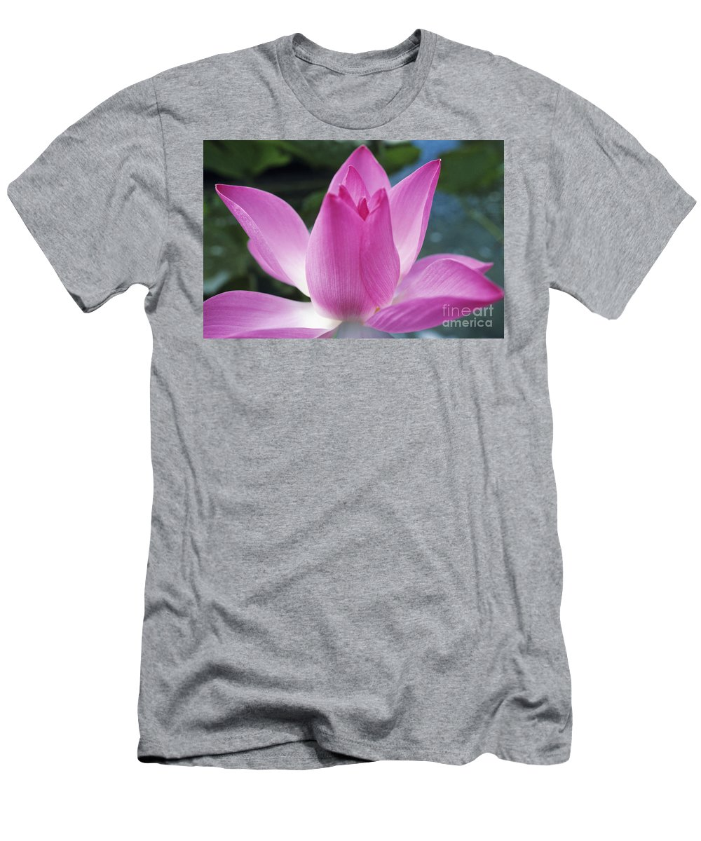 Beautiful Men's T-Shirt (Athletic Fit) featuring the photograph Pink Lotus by Larry Dale Gordon - Printscapes