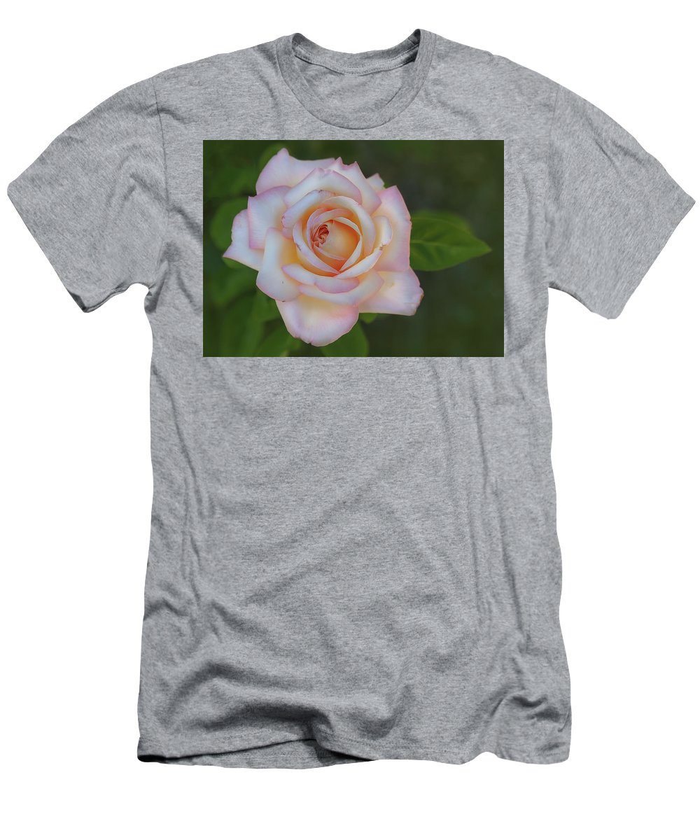 Pink Men's T-Shirt (Athletic Fit) featuring the photograph Pink Rose by Rick Mosher