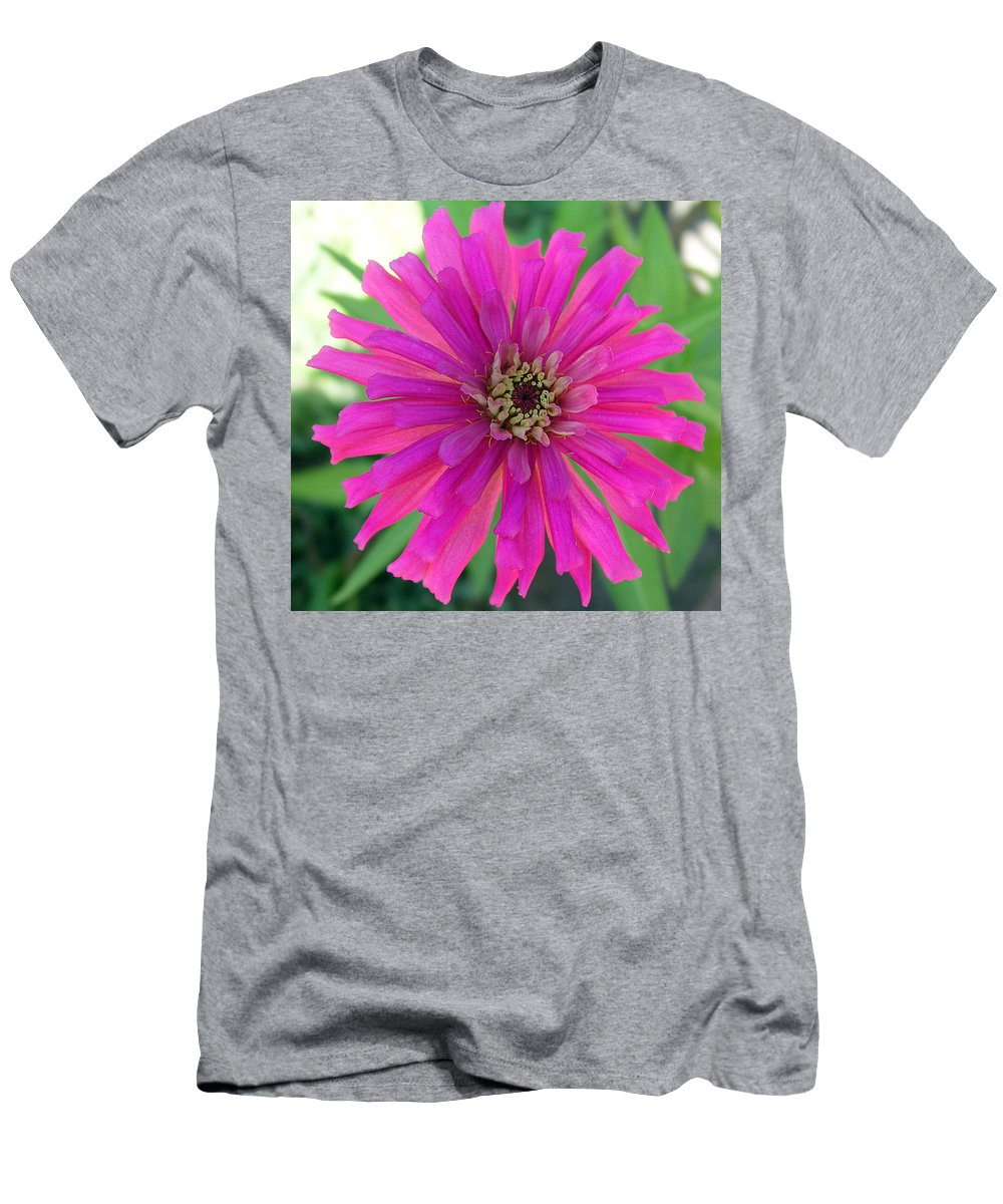Zinnia; Flower; Pink; Translucent; Transparent; Florida; Petals; Garden; Zinnia; Agustifolia; Flower Men's T-Shirt (Athletic Fit) featuring the photograph Pink Zinnia In Florida by Allan Hughes