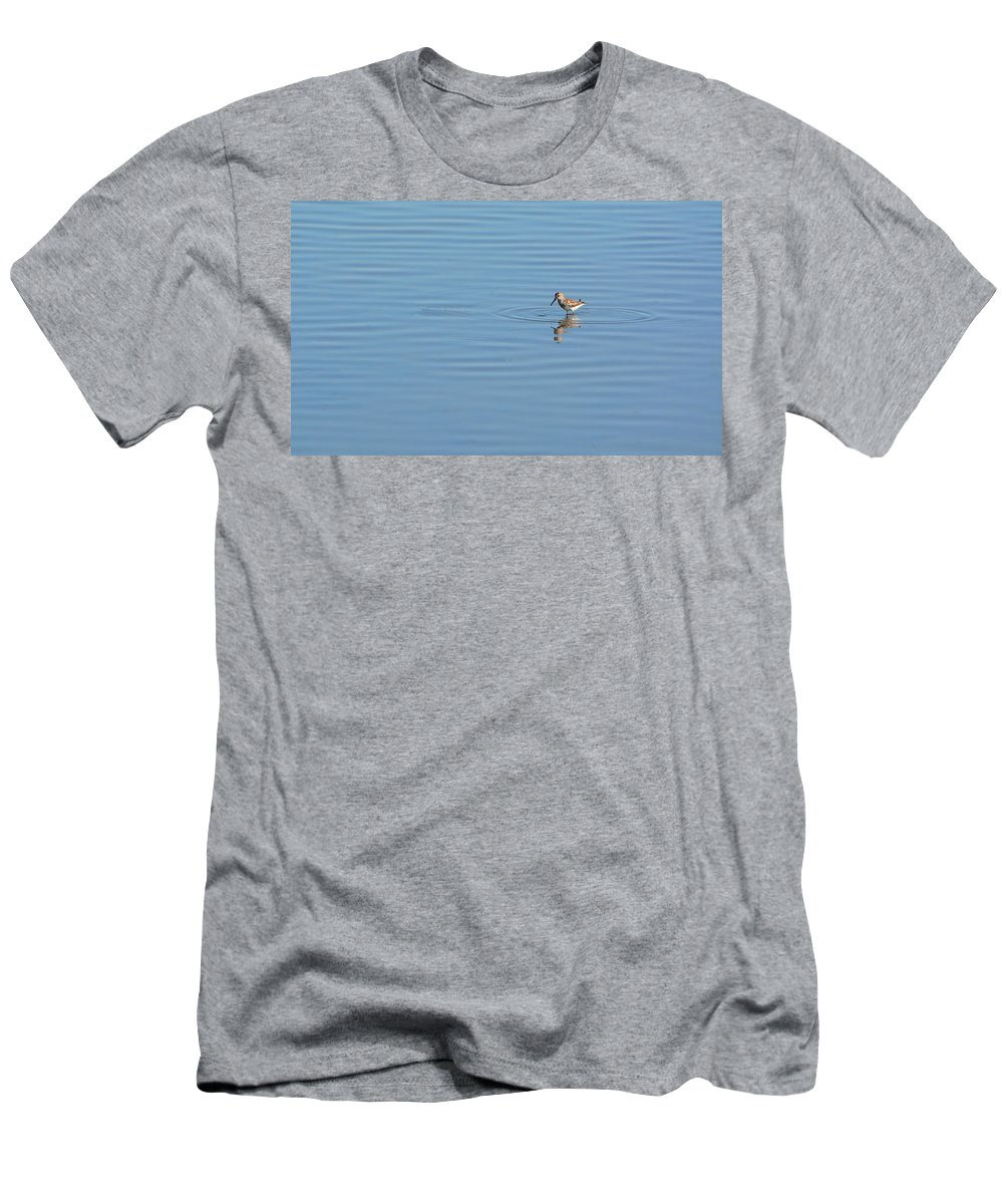Plover Men's T-Shirt (Athletic Fit) featuring the photograph Plover And Ripples by Josephine Buschman
