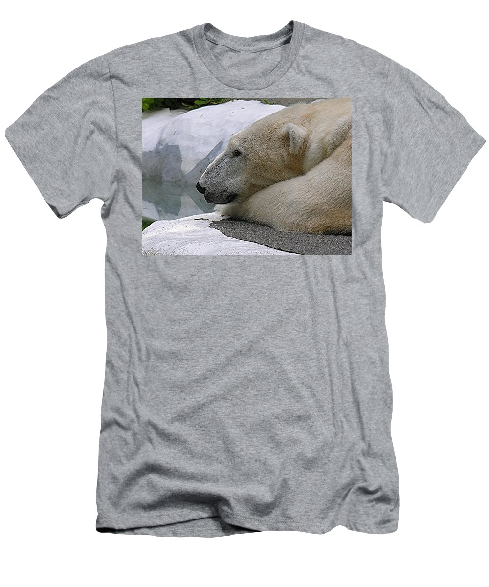 Pola Men's T-Shirt (Athletic Fit) featuring the photograph Pondering Pola by Diane Greco-Lesser