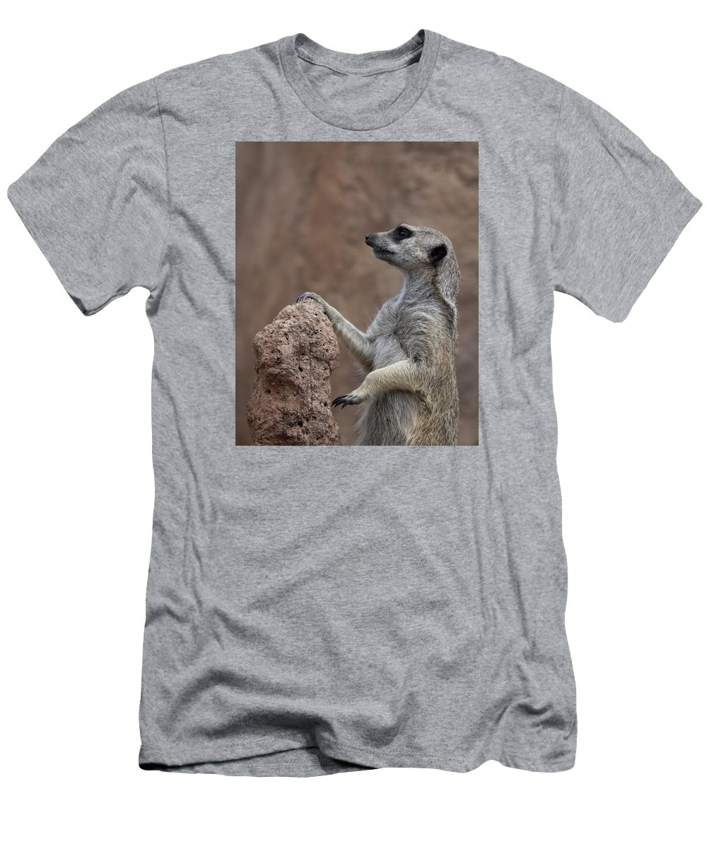 Meerkat Men's T-Shirt (Athletic Fit) featuring the photograph Pose Of The Meerkat by Ernie Echols