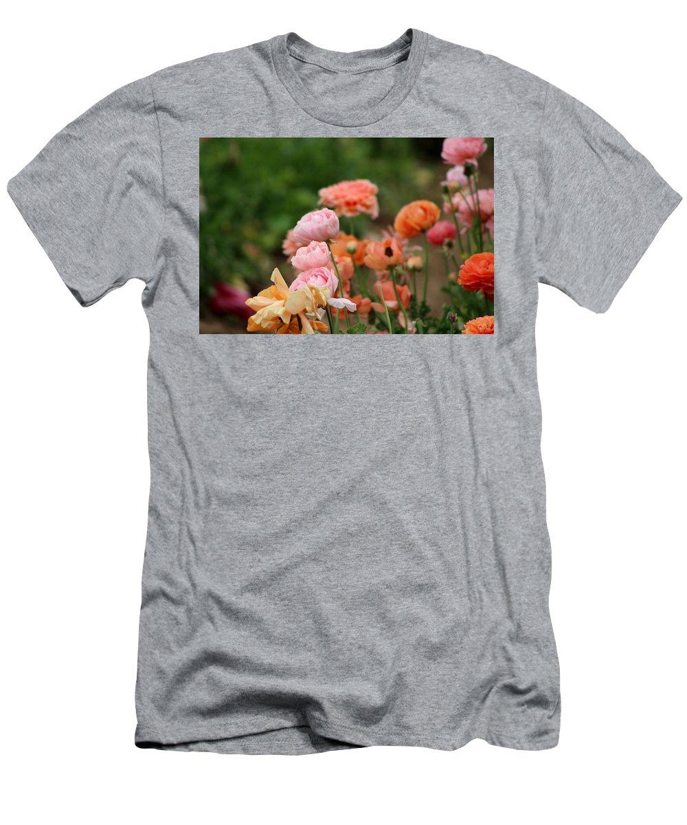 Powder Pink Ranunculus T-Shirt featuring the photograph Powder Pink and Salmon Ranunculus by Colleen Cornelius