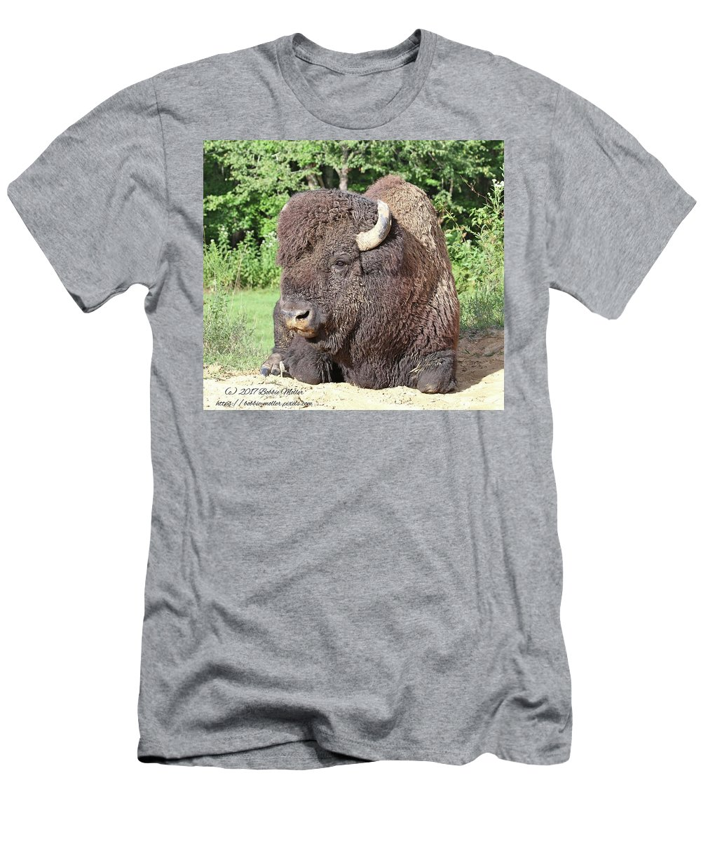 Land Between The Lakes Men's T-Shirt (Athletic Fit) featuring the photograph Prim And Proper Bison by Bobbie Moller
