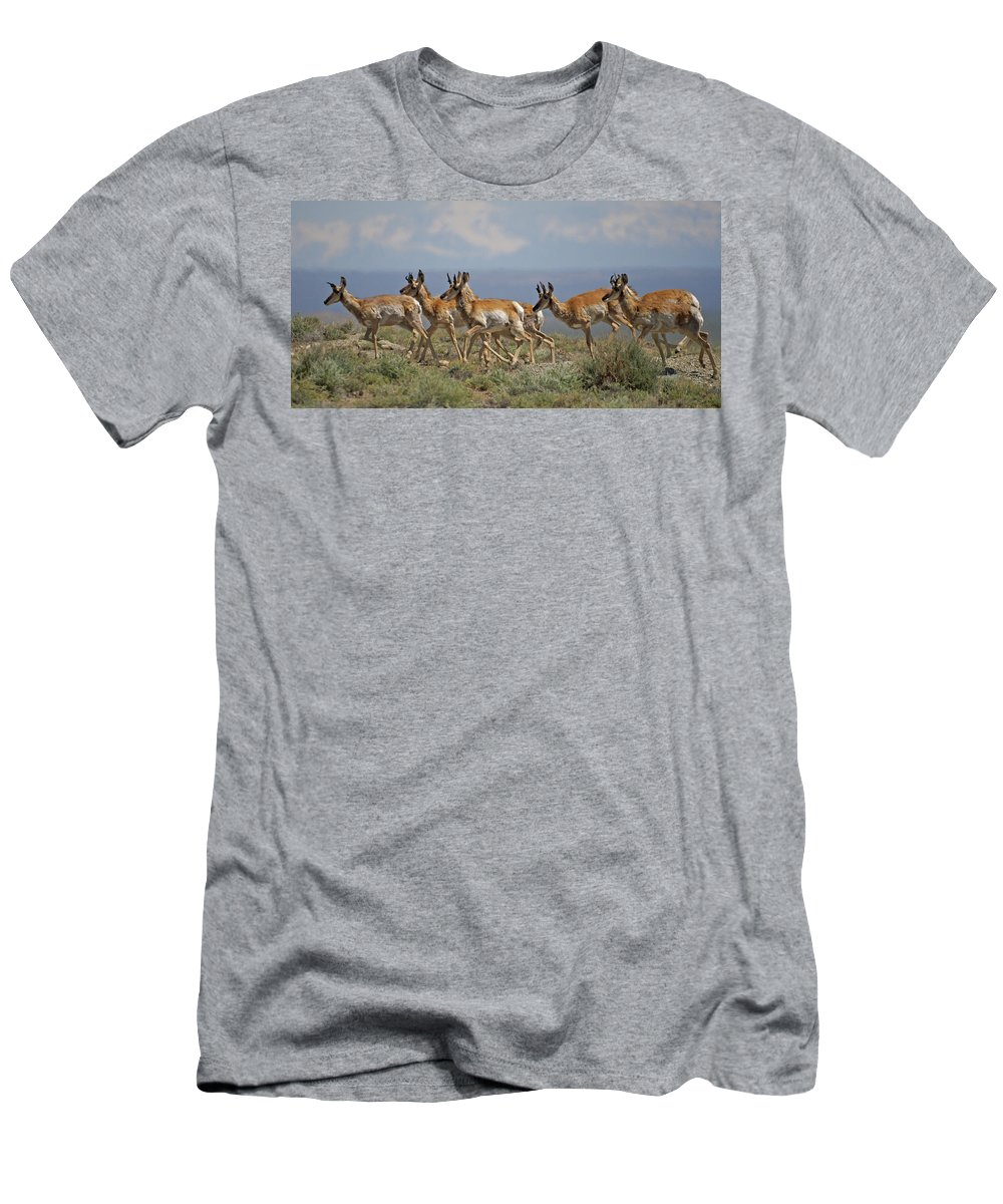 Pronghorn Men's T-Shirt (Athletic Fit) featuring the photograph Pronghorn Antelope Running by Heather Coen