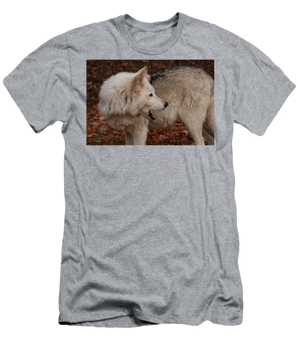 Wolf Men's T-Shirt (Athletic Fit) featuring the photograph Quiet Back There by Lori Tambakis