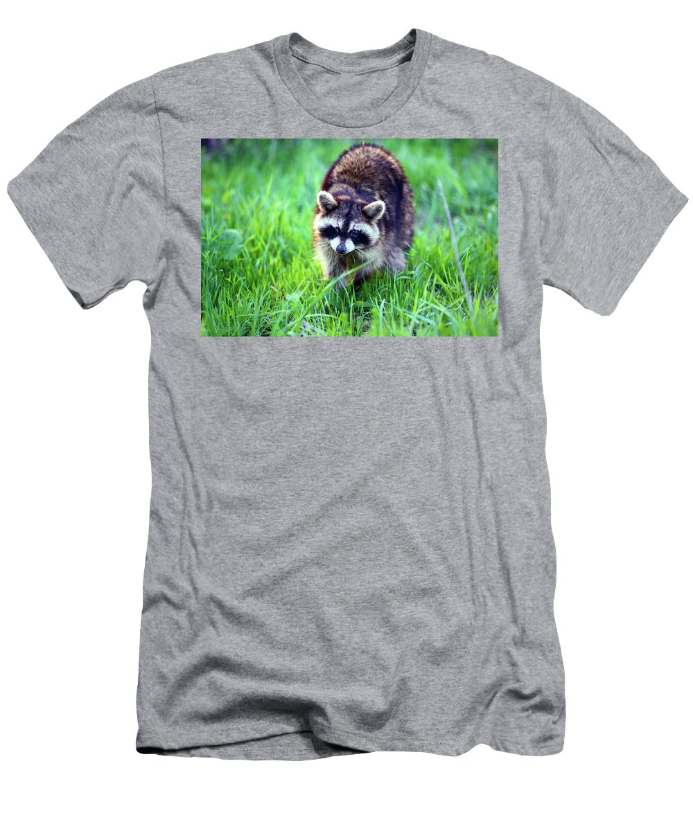 Animal Men's T-Shirt (Athletic Fit) featuring the photograph Raccoon by Alan Look