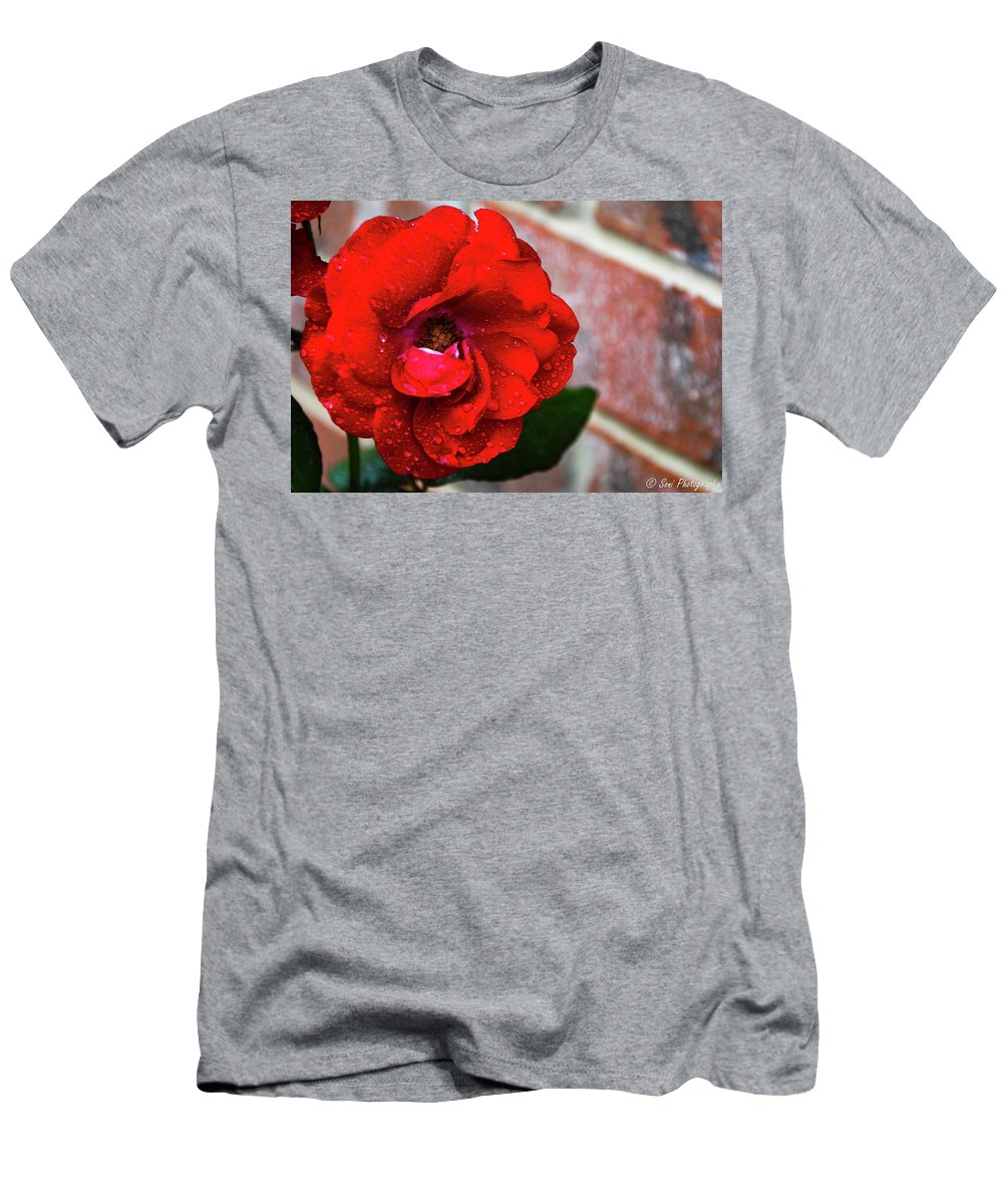 Brick Wall Men's T-Shirt (Athletic Fit) featuring the photograph Rain Covered Red Rose by Soni Macy