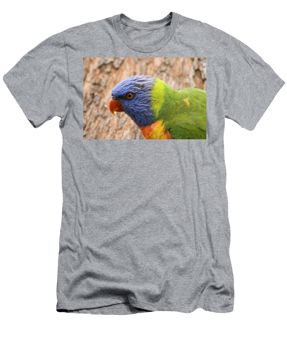 Rainbow Men's T-Shirt (Athletic Fit) featuring the photograph Rainbow Lorikeet by Mike Dawson