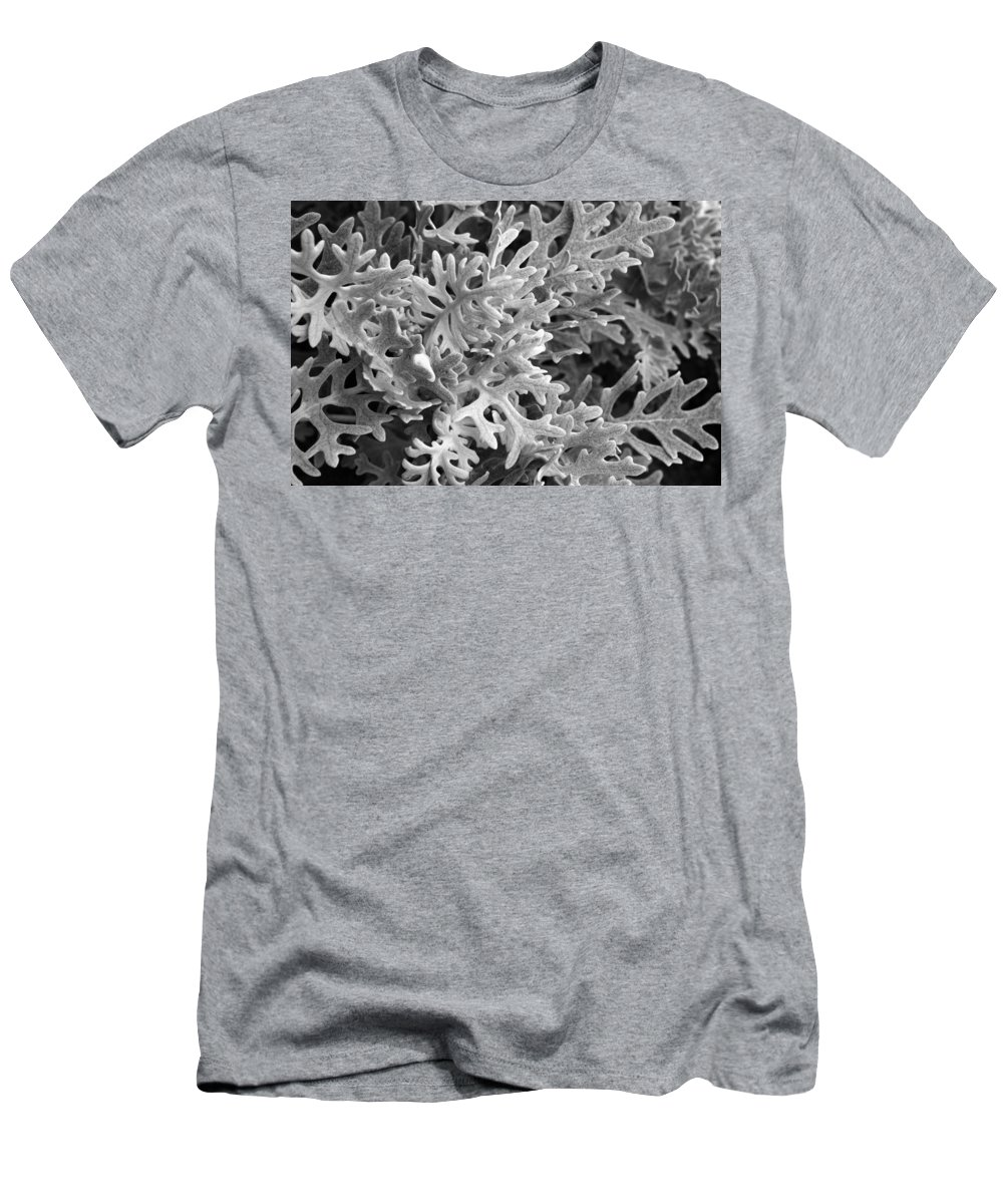 Plant Men's T-Shirt (Athletic Fit) featuring the photograph Reaching Out by Sandi OReilly