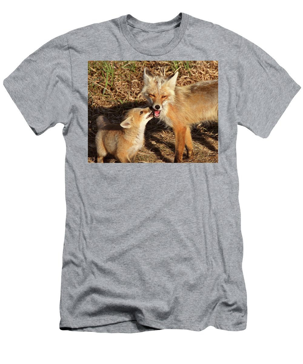 Red Fox Men's T-Shirt (Athletic Fit) featuring the digital art Red Fox Vixen With Pup On Hecla Island In Manitoba by Mark Duffy