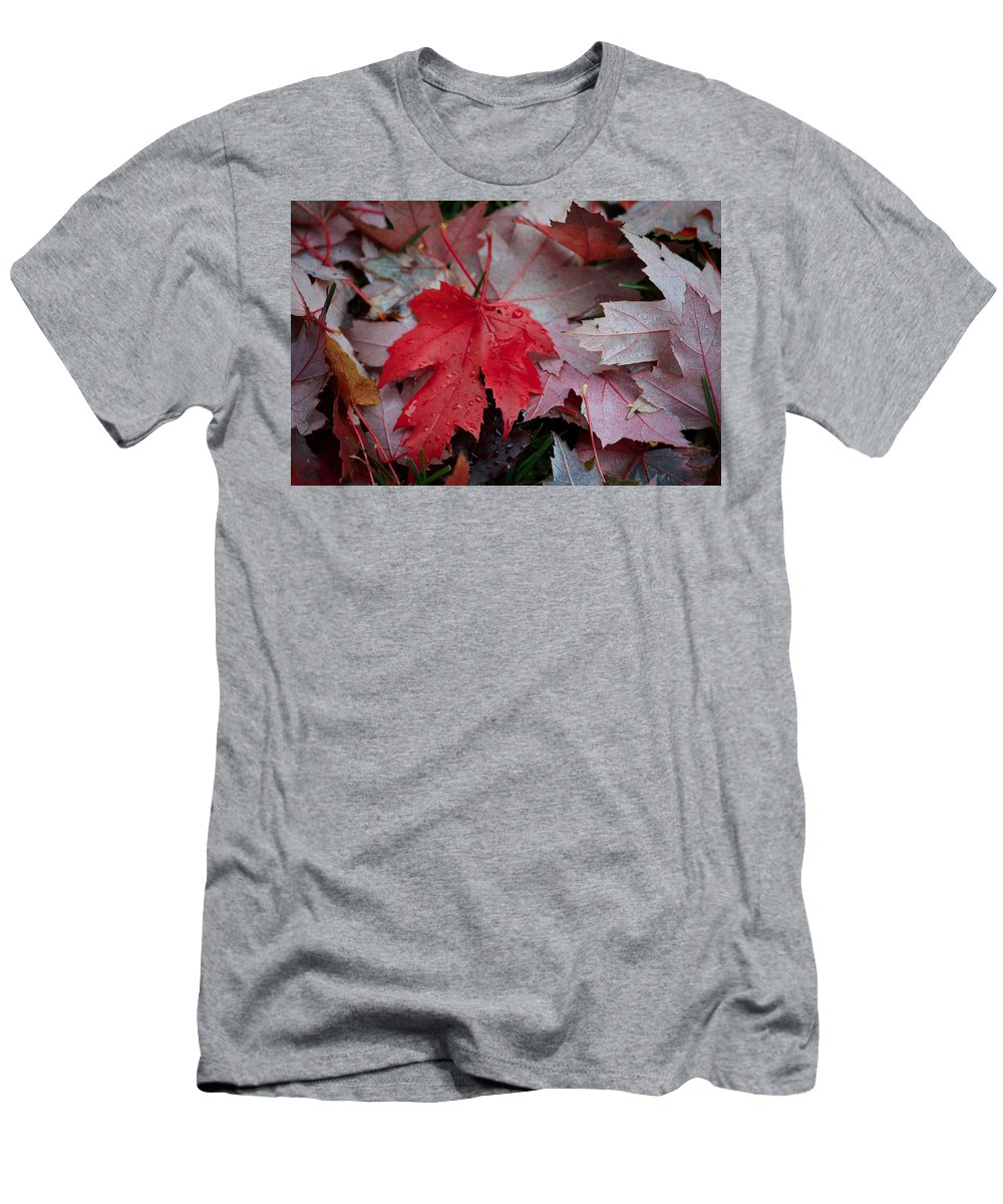 Leaves Men's T-Shirt (Athletic Fit) featuring the photograph Red Maple Leaf by Hella Buchheim
