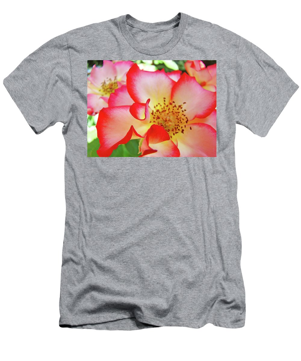 Rose T-Shirt featuring the photograph Red Roses White Yellow Rose Flower Floral art print Baslee Troutman by Patti Baslee