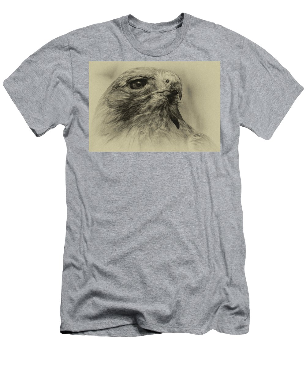 Red-tailed Hawk Men's T-Shirt (Athletic Fit) featuring the photograph Red-tailed Hawk 1 by David Pine