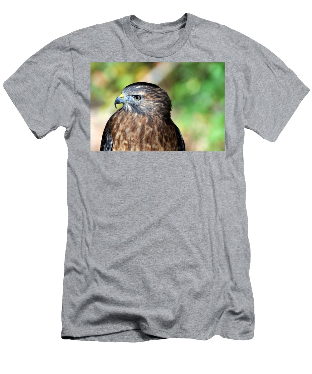 Redtail Hawk Men's T-Shirt (Athletic Fit) featuring the photograph Redtail by Marty Koch