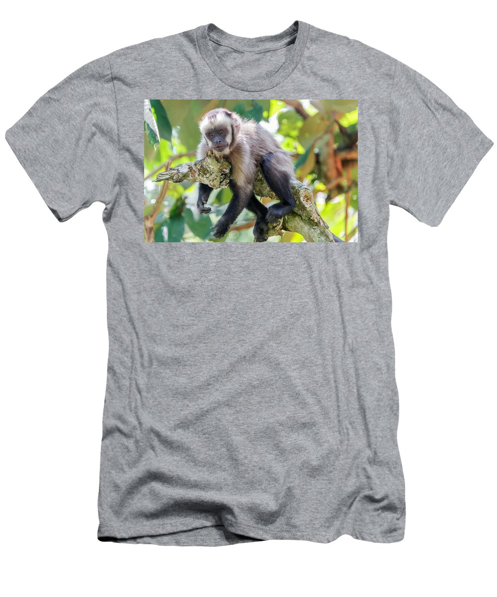 Capuchin Men's T-Shirt (Athletic Fit) featuring the photograph Relaxing Capuchin Monkey by Jess Kraft