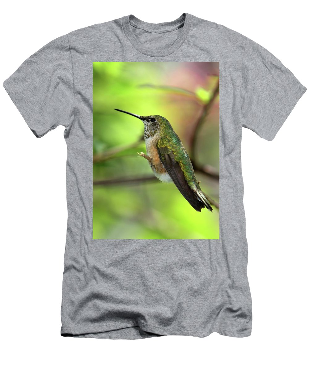Bird Men's T-Shirt (Athletic Fit) featuring the photograph Resting Hummingbird by Sabrina L Ryan