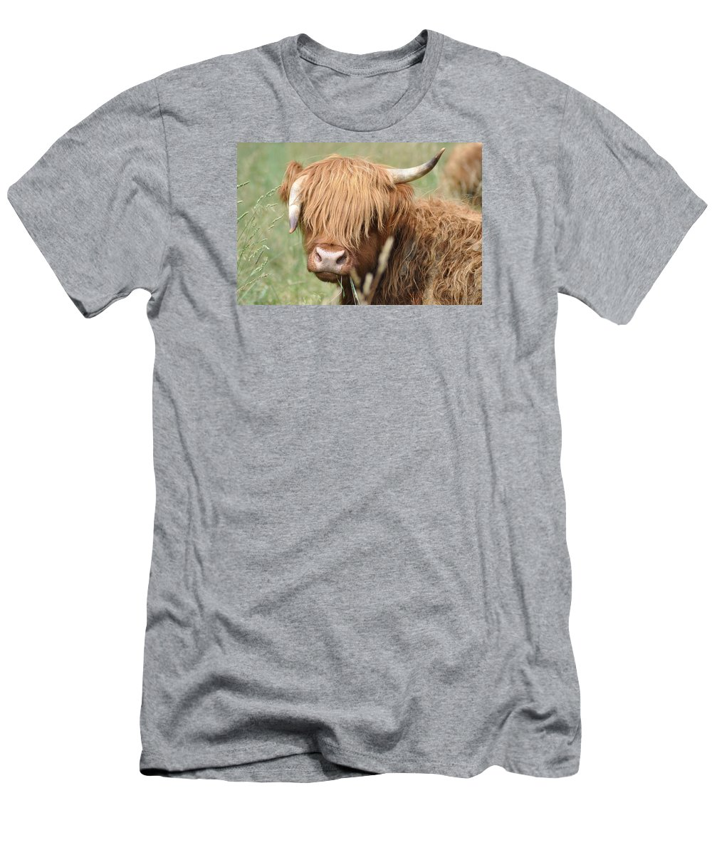 Cow Men's T-Shirt (Athletic Fit) featuring the photograph Ringo - Highland Cow by Bill Cannon