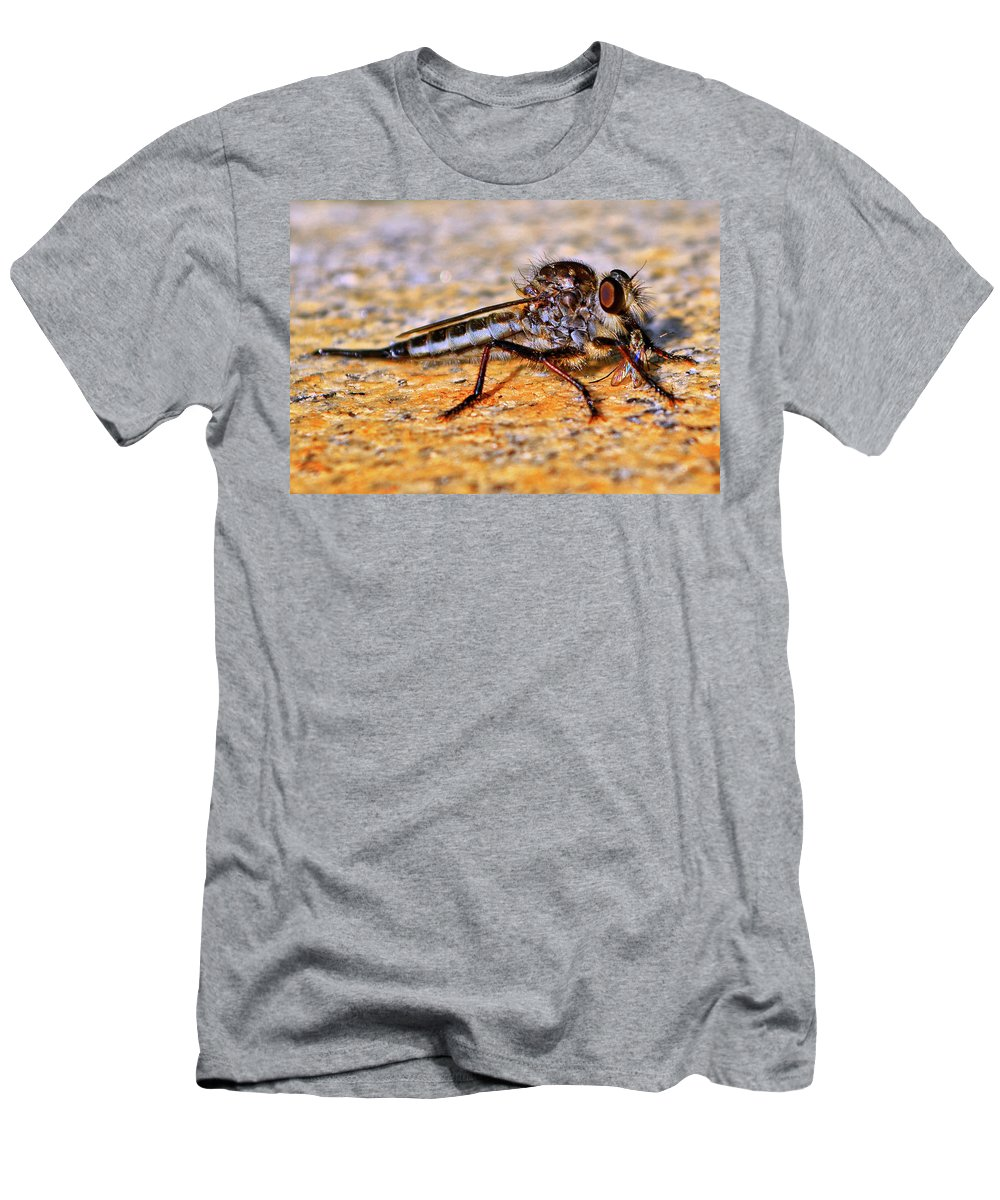 Robber Fly Men's T-Shirt (Athletic Fit) featuring the photograph Robber Fly 001 by George Bostian