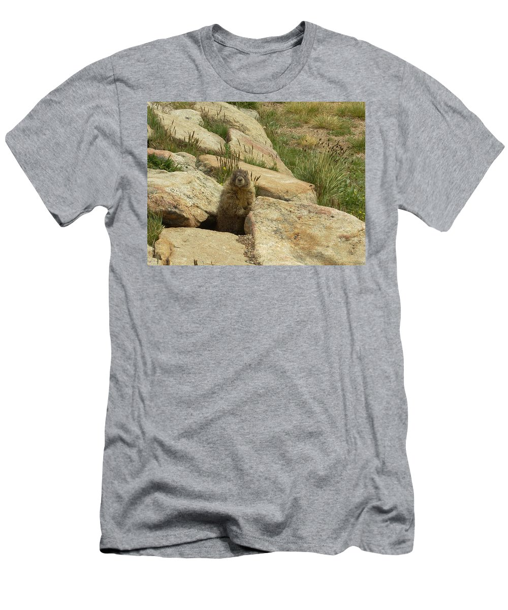 Critter Men's T-Shirt (Athletic Fit) featuring the photograph Rock Critter by Sara Stevenson