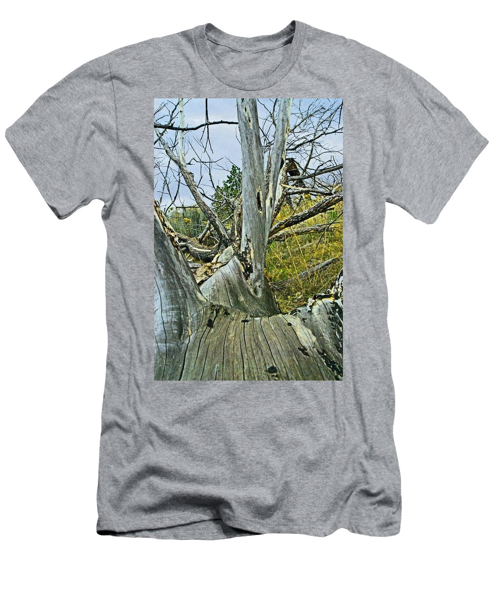 Dead Men's T-Shirt (Athletic Fit) featuring the photograph Rolling Log by Sara Stevenson