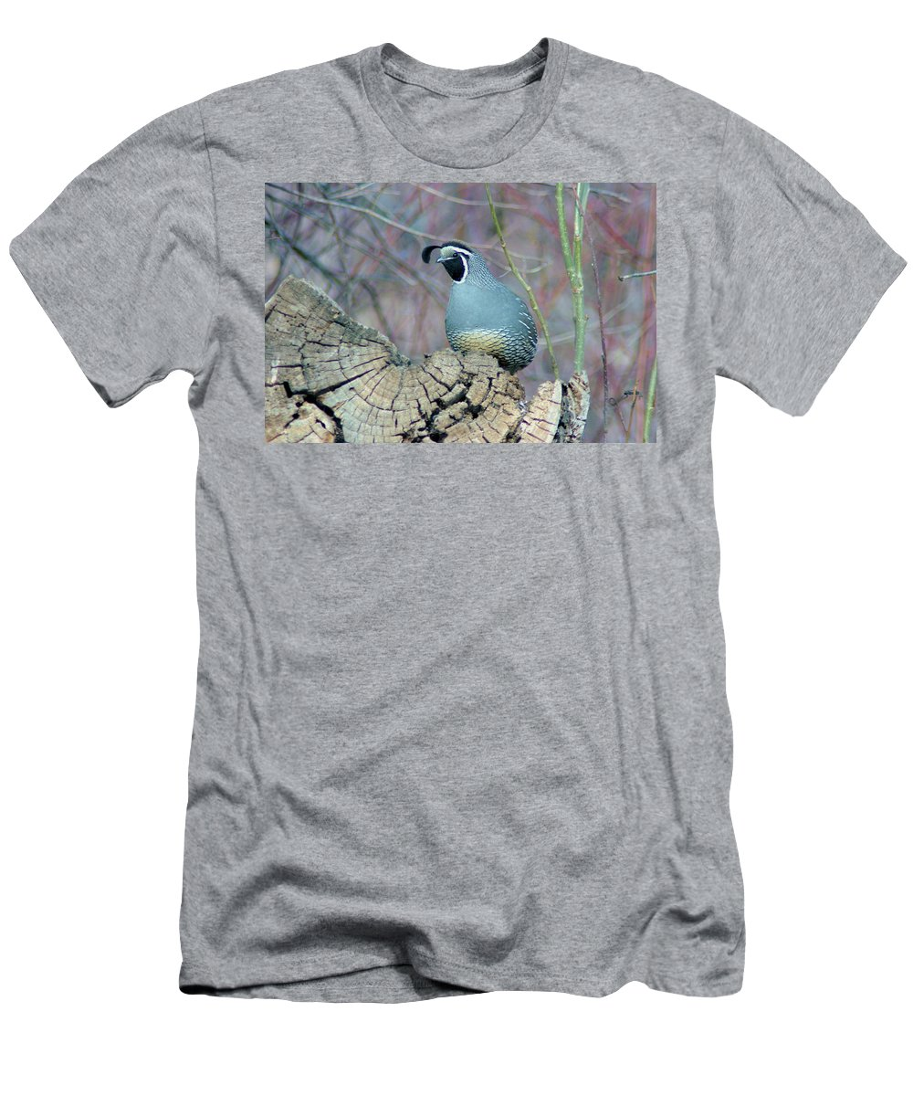 Fowl Men's T-Shirt (Athletic Fit) featuring the photograph Rooster Quail by Jeff Swan
