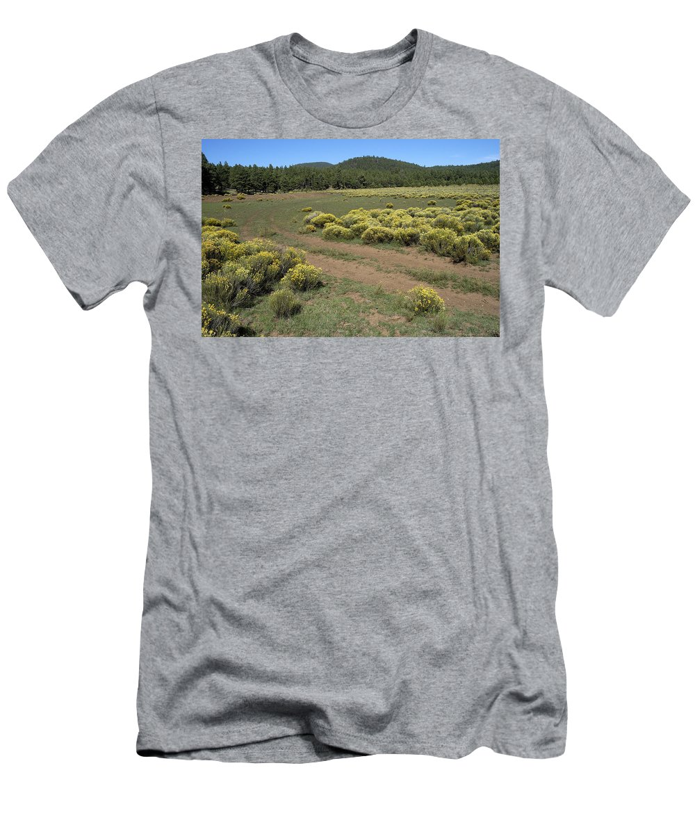 Sage Brush Men's T-Shirt (Athletic Fit) featuring the photograph Sage In Bloom - Flagstaff by D'Arcy Evans