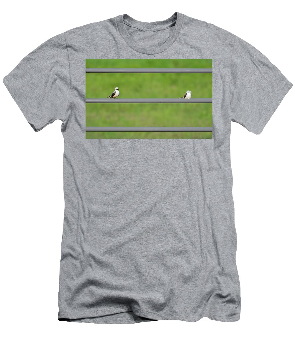 Bird Men's T-Shirt (Athletic Fit) featuring the photograph Scissor-tail Flycatcher Couple by Lindy Pollard