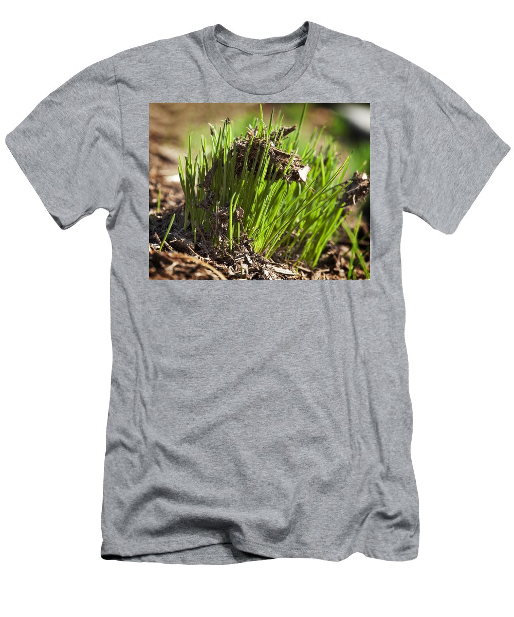 Grass Men's T-Shirt (Athletic Fit) featuring the photograph Seedlings by Kelley King