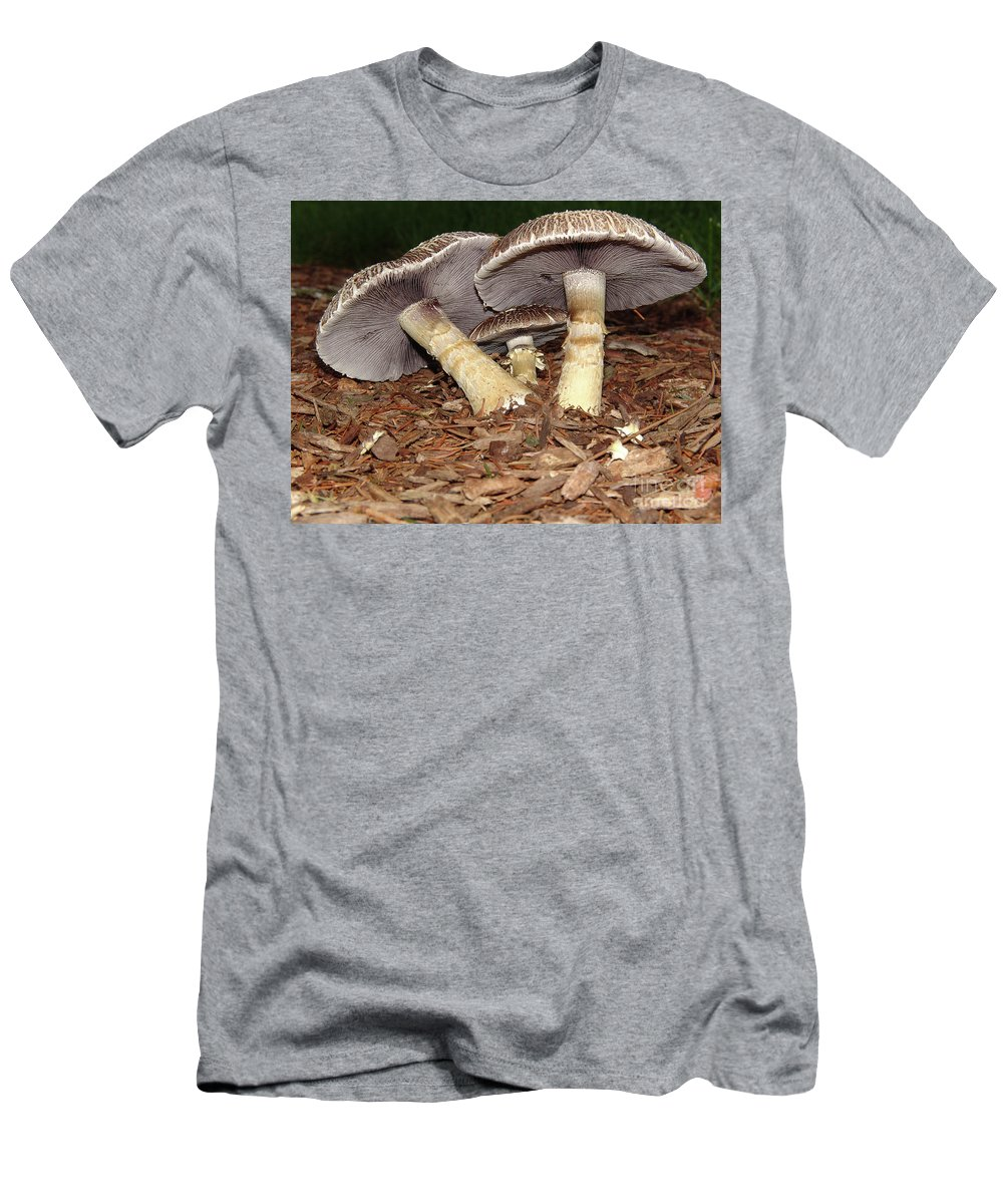Mushroom Men's T-Shirt (Athletic Fit) featuring the photograph Sheltering The Young by Judy Whitton