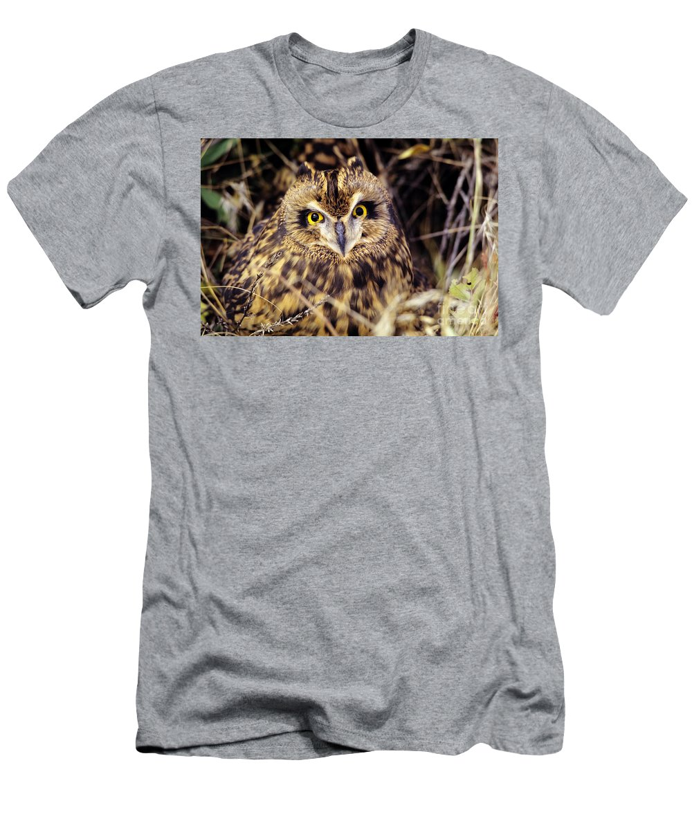 Animal Art Men's T-Shirt (Athletic Fit) featuring the photograph Short Eared Owl by John Hyde - Printscapes