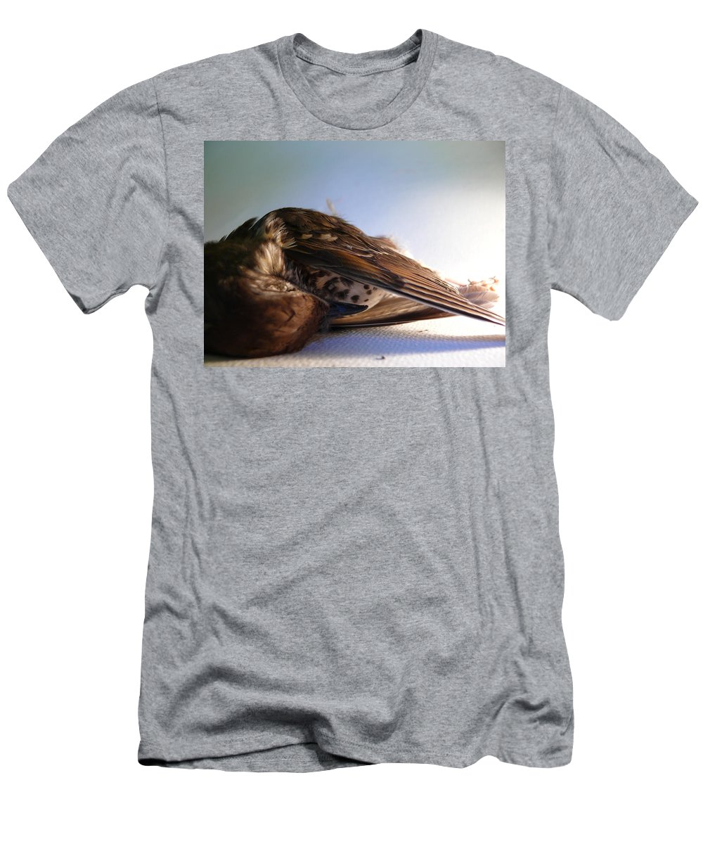 Dead Bird Men's T-Shirt (Athletic Fit) featuring the photograph Silent by Charlie Mclenahan
