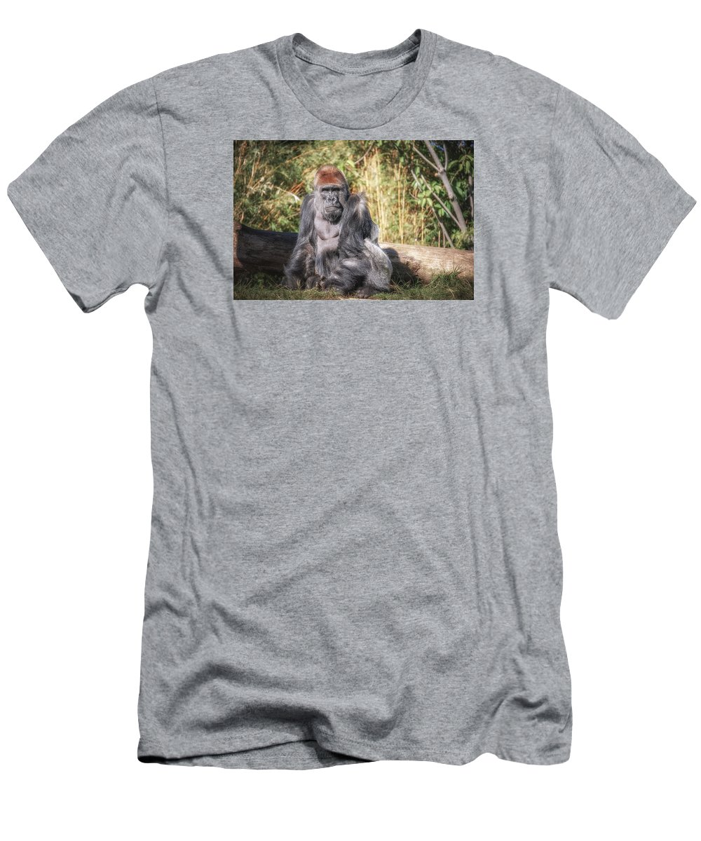 Wildlife Men's T-Shirt (Athletic Fit) featuring the photograph Silverback by Artist Jacquemo