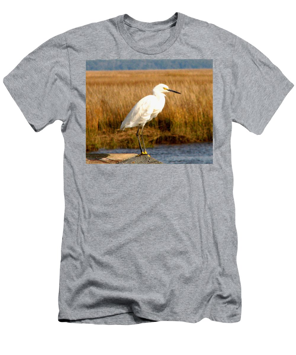 Bird Egret snowy Egret white Egret Seabird Animals Nature Wildlife Men's T-Shirt (Athletic Fit) featuring the photograph Snowy Egret 2 by J M Farris Photography