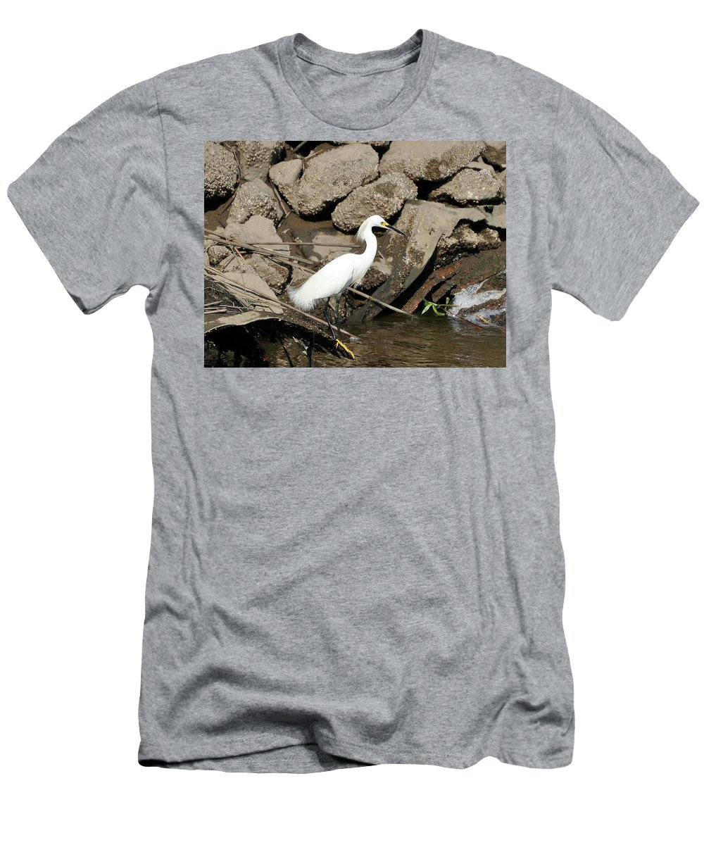 Snowy Egret Men's T-Shirt (Athletic Fit) featuring the photograph Snowy Egret Fishing by Al Powell Photography USA