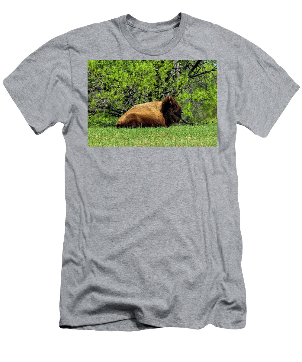 Texas Men's T-Shirt (Athletic Fit) featuring the photograph Solitary Buffalo by Marilyn Burton